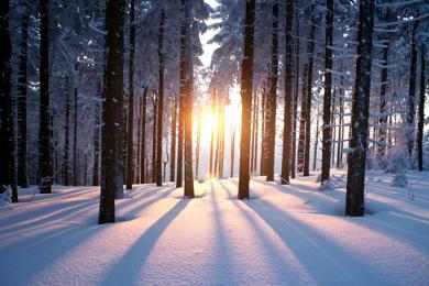 Bild für Kategorie Winterprogramm